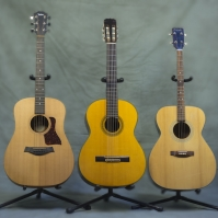 Acoustic Guitars 2